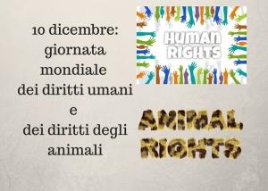 Giornata mondiale dei diritti umani e degli animali – 10 dicembre